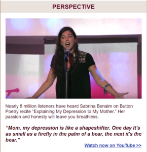 Screenshot of RAISE May 2019 e-newsletter